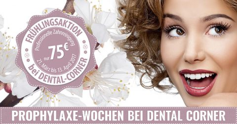 Prophylaxe Angebot Dental Corner