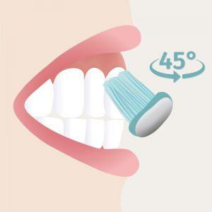 Zahnpflege - Schritt 1 _Zahnbürste anlegen